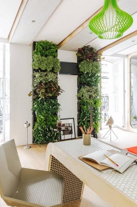 Вертикальный сад в интерьере. / Фото: proremont.ovh