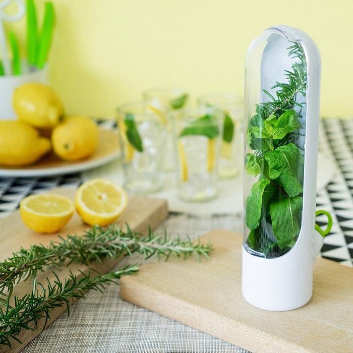 Устройство может сохранять зелень свежей на протяжении трех недель. / Фото: red-paprika.ru