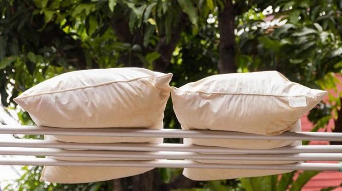 Подушки нужно выносить на улицу, чтобы проветрить. / Фото: kingsdom.ru