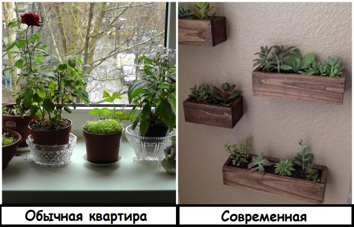 Растения в настенных кашпо смотрятся красивее и аккуратнее