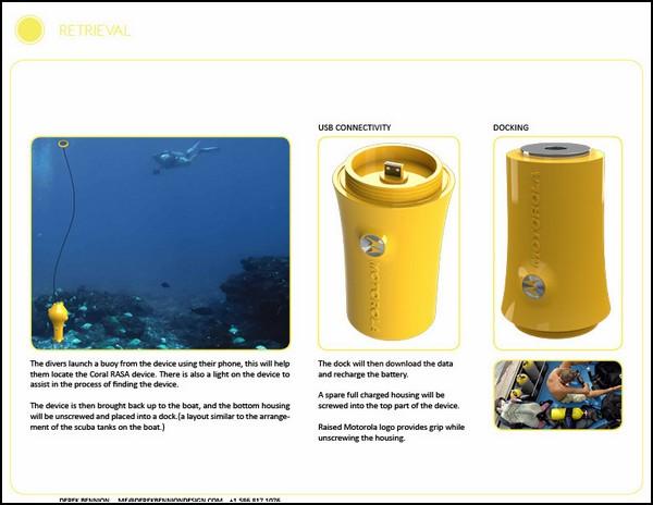Коралловые рифы нужно спасать: смотритель рифовых заповедников Coral RASA