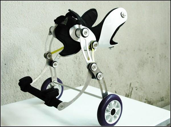 Запасные ноги для собак и кошек: лечебная тележка Amigo