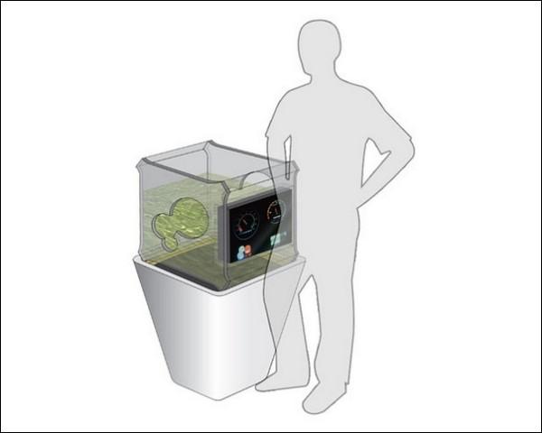 Производство биотоплива в домашних условиях: концепт Bio-Grow