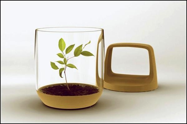 Лучший фонарь для садовода: свет и рост одновременно