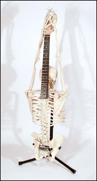 Необычные гитары: музыкальная версия Веселого Роджера
