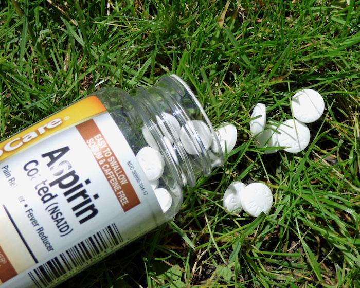 Аспирин в садоводстве.