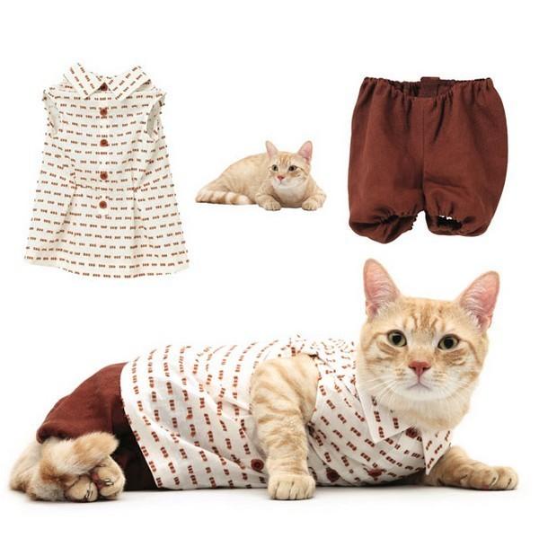 Коллекция «человеческой» одежды для кошек Catclub от United Bamboo