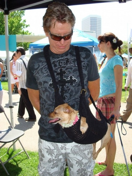 «Инновационная» сумка для собак Puppoose явно не вызывает у хвостатых «щенячьего» восторга