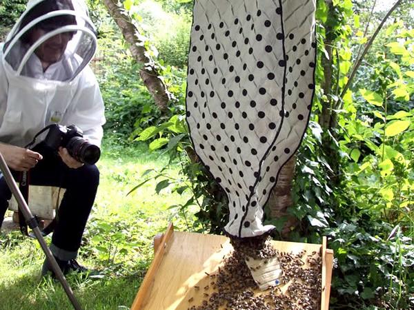 Оригинальный проект дизайнерских ульев и стильных накидок Bees Beside Us от Эми Плижка (Amy Pliszka)