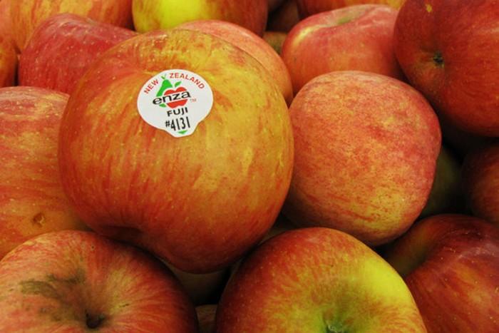 Почти «нормальное» яблоко.