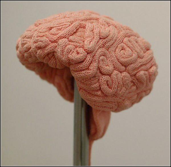 Обзор оригинальных шапок и прочих головных уборов: шапка-мозг