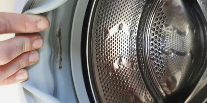 Плесень может атаковать даже стиральную машину.