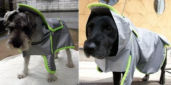 Защитная одежда для животных на случай катаклизмов из Японии