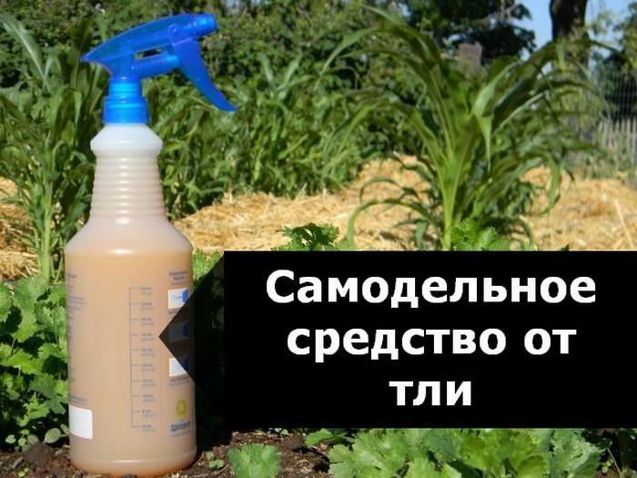 Безопасный пестицид на основе мыльного раствора.