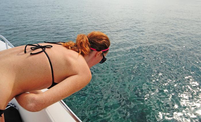 Гвоздика против морской болезни.