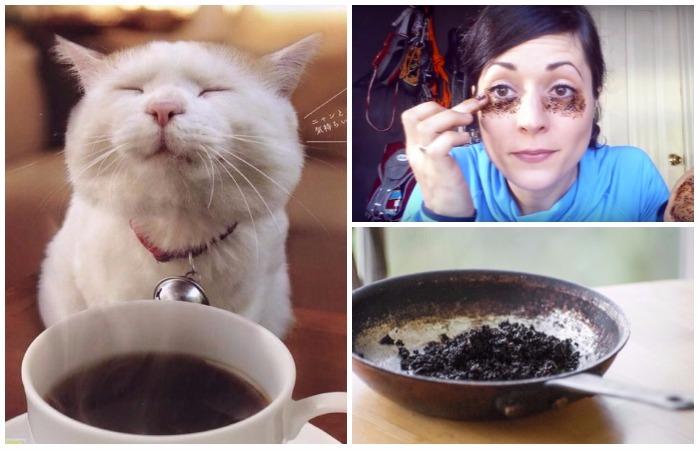 11 уважительных причин не выбрасывать кофейную гущу.