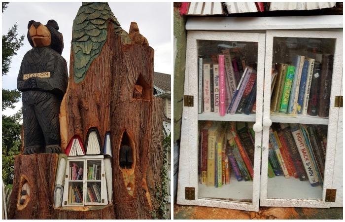 На месте спиленного кедра появилась маленькая библиотека.