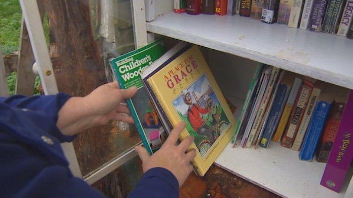 Тут соседи могут брать книжки в любое время и бесплатно.