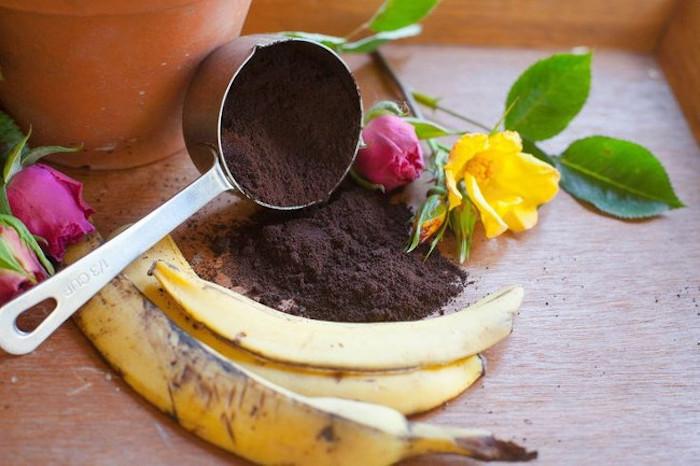 Банановая кожура как удобрение для роз.