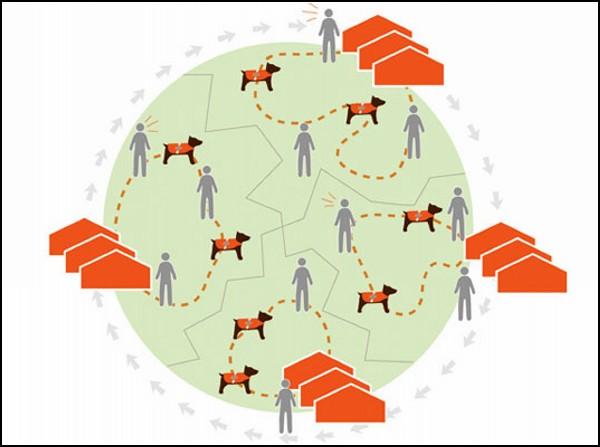 Если человек в беде, собака-спасатель в технологичном жилете передаст весточку его родным