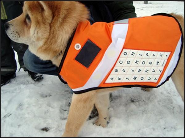 Жилет для собак-спасателей всех пород и размеров