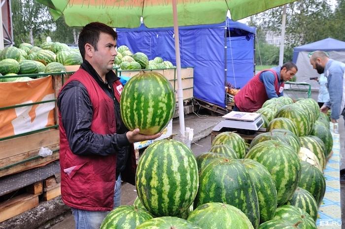 В Крыму знают всё об арбузах.