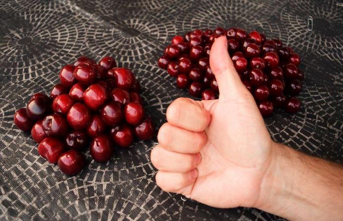 Как быстро удалить с вишни косточки
