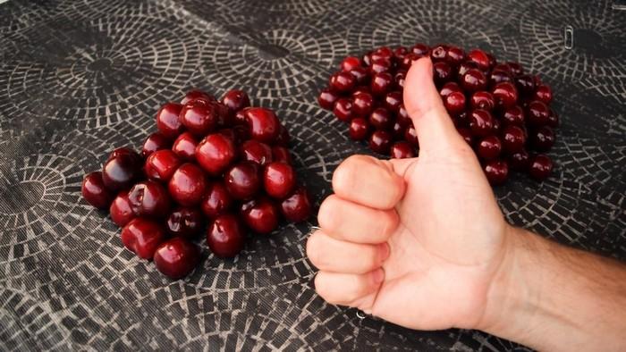 Как быстро удалить косточки из вишни и (почти) не запачкать руки