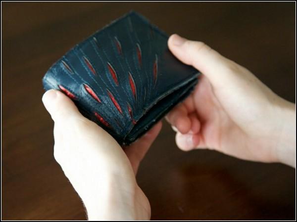 Умный кошелёк научит планировать бюджет