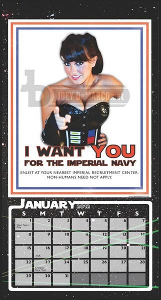 Проект пикантного календаря для фанатов «Звёздных войн» и горячих девушек