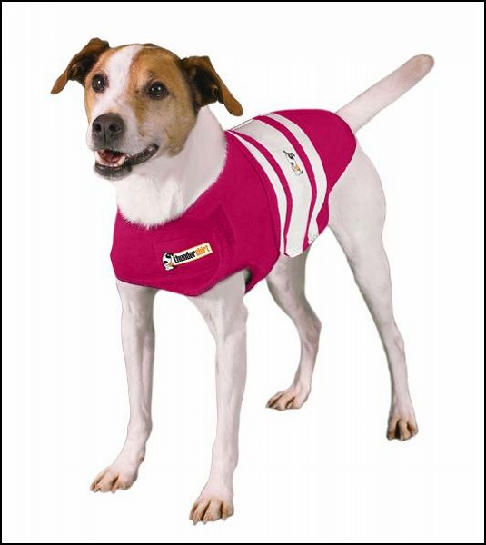 Жилет для собак Thundershirt