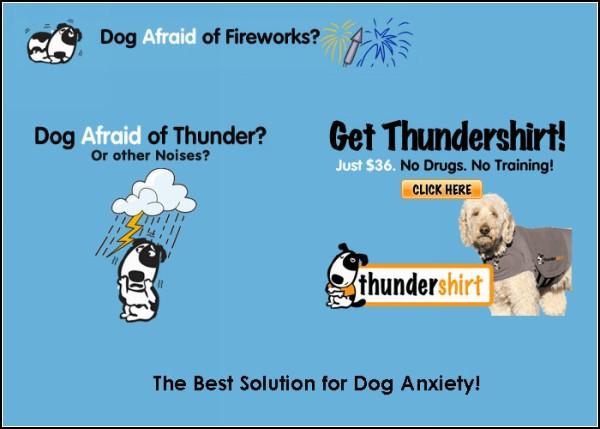Жилет для собак Thundershirt успокоит питомца и поможет ему справиться с пугливостью