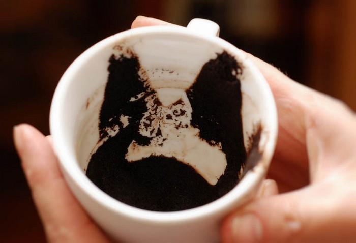 Бактерии не любят кофейную гущу.