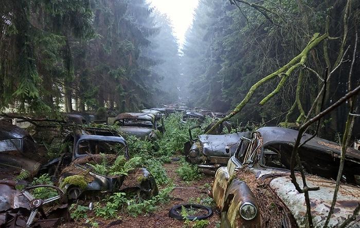 Забытый склад автомобилей в Бельгии/ Фото: flickr.com