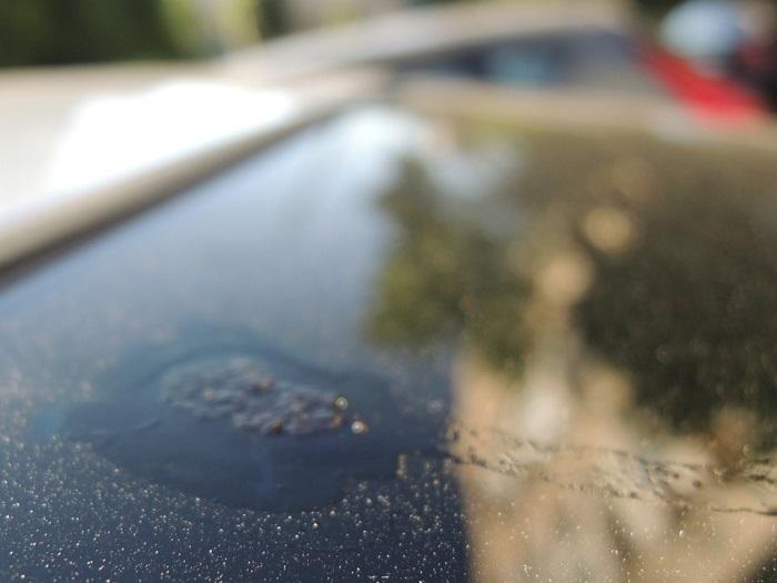 Въевшийся птичий помет на кузове машины/ Фото: drive2.ru