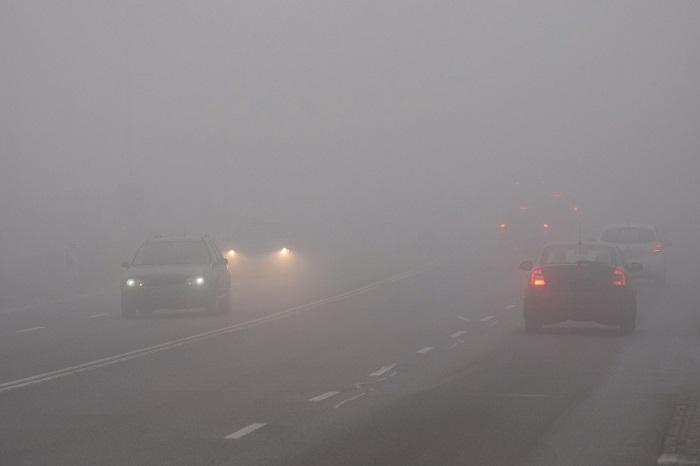 Автомобили в тумане/ Фото: novostipmr.com