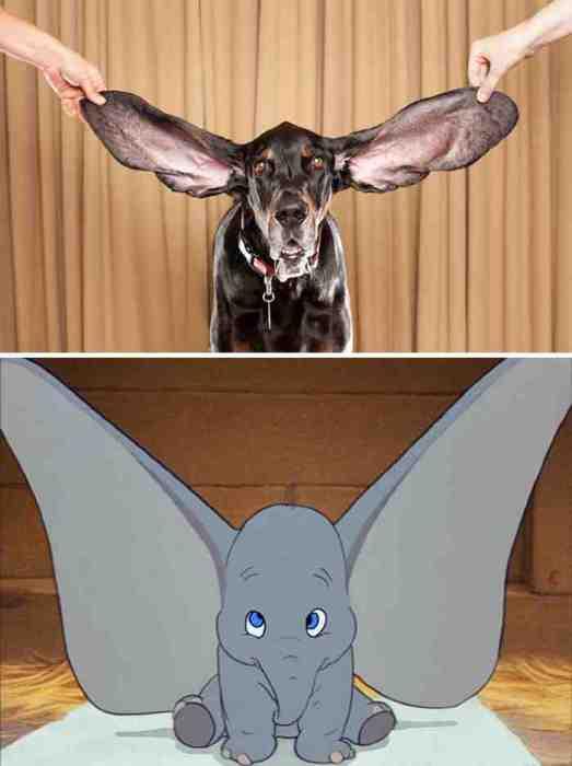 Собака - Слоненок Думбо