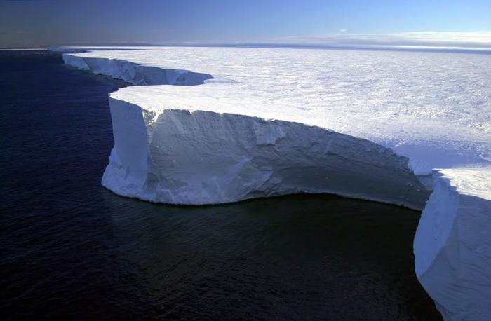 Первое видео уникального подледного мира Антарктики, снятое роботизированным зондом-субмариной