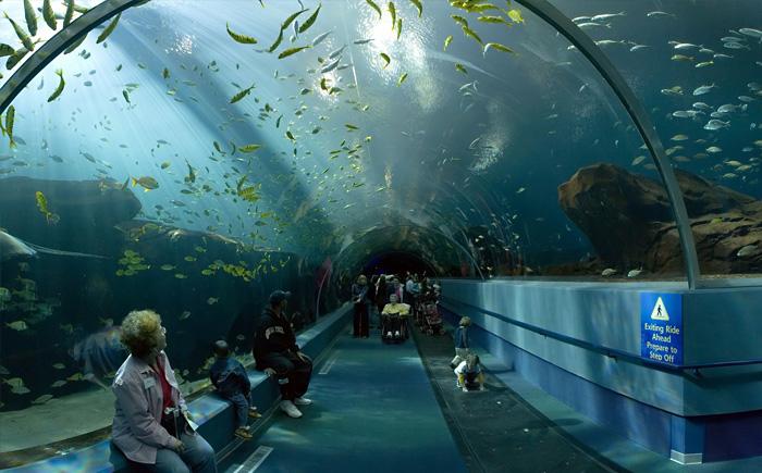 Аквариаус Kuroshio Sea - второй по величине аквариум в мире