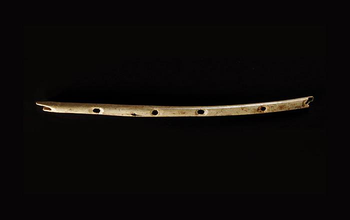 Самый древний в мире музыкальный инструмент