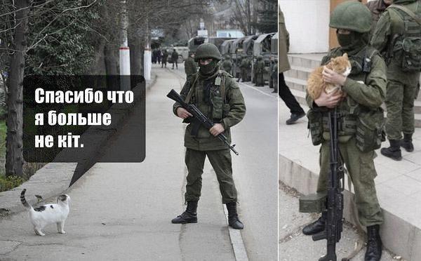 Вежливые люди и коты в Крыму.