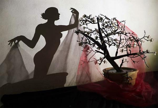 Прекрасные женщины, сотканные из теней. Композиция «Акина».