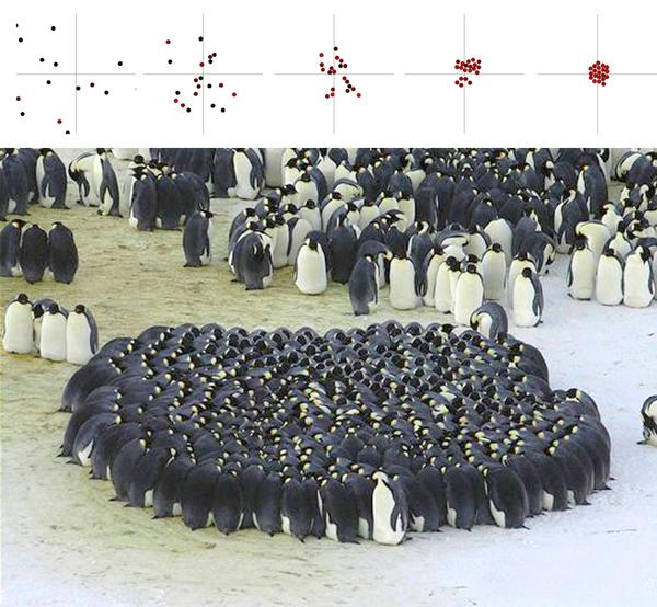 В проекте позаимствован характер группировки пингвинов.