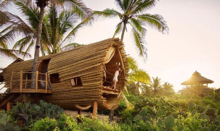 Бамбуковый дом на дереве.