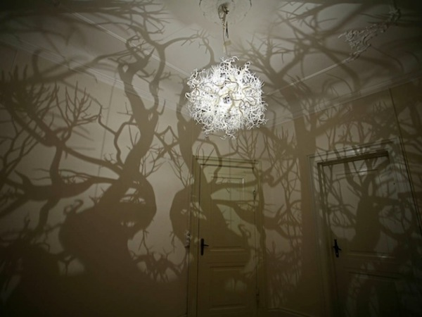 http://www.novate.ru/files/u28448/Nature_Tree_Shadow_Light_02.jpg