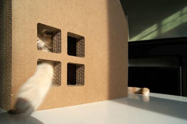 Scratch house: картонный дом для вашей кошки