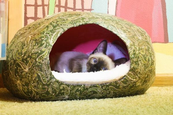 Как сделать домик кошке в домашних условиях