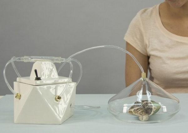 Madeleine: полный молекулярный анализ запаха