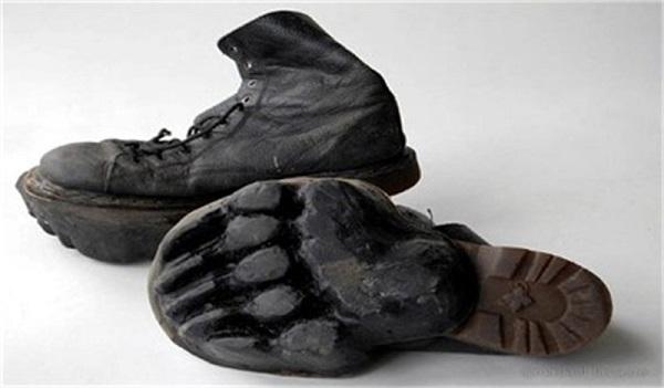 Animal Footprint Wear - оригинальная зимняя обувь от Maskull Lasserre