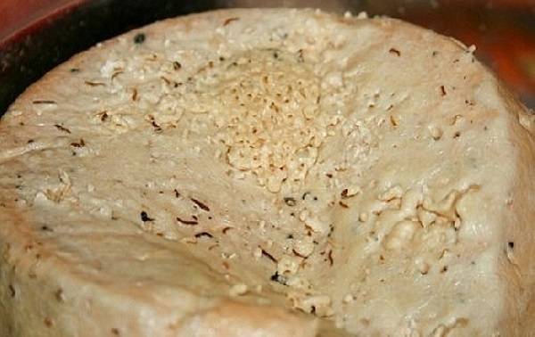 Casu Marzu - сыр с живыми личинками